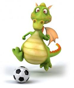 VfR Fussbalcamp